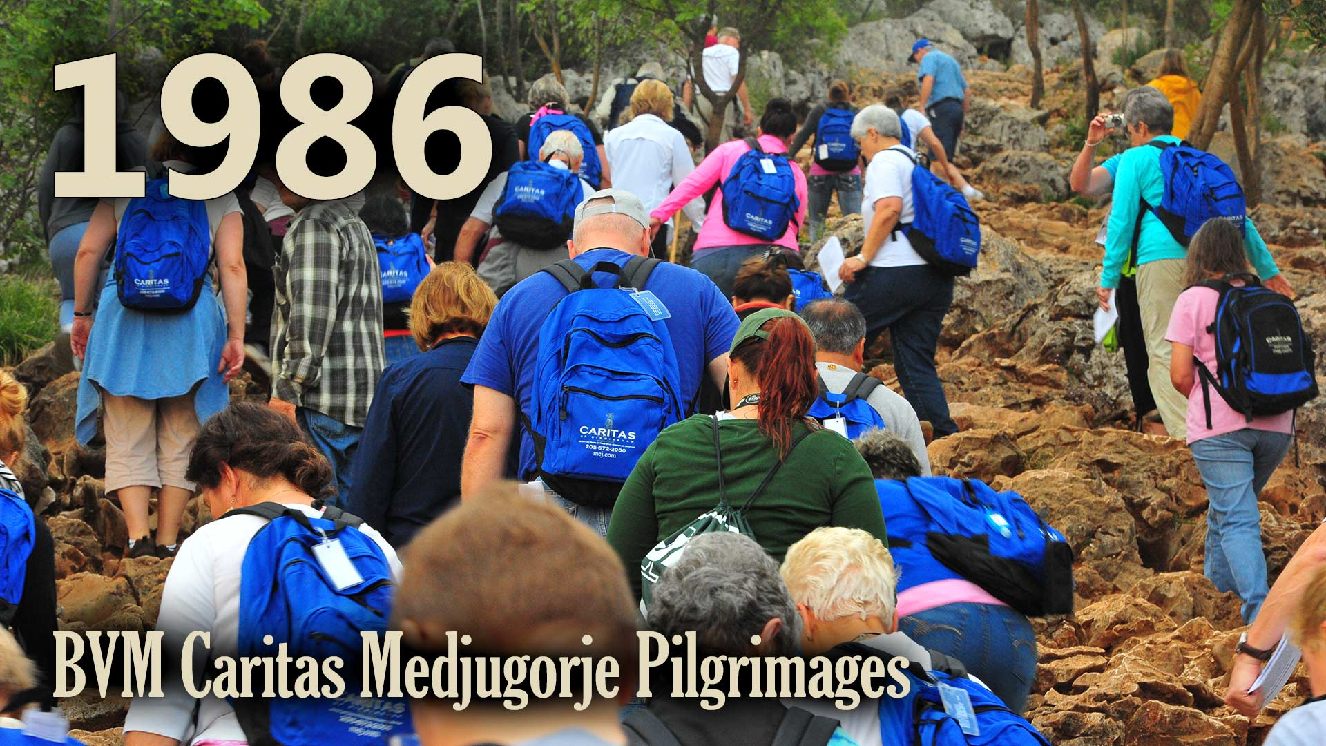 BVM Pilgrimages